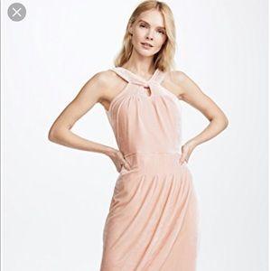 cupcakes & cashmere Dresses - NWT Cupcakes & Cashmere Pink Velvet Dress sz. 10✨
